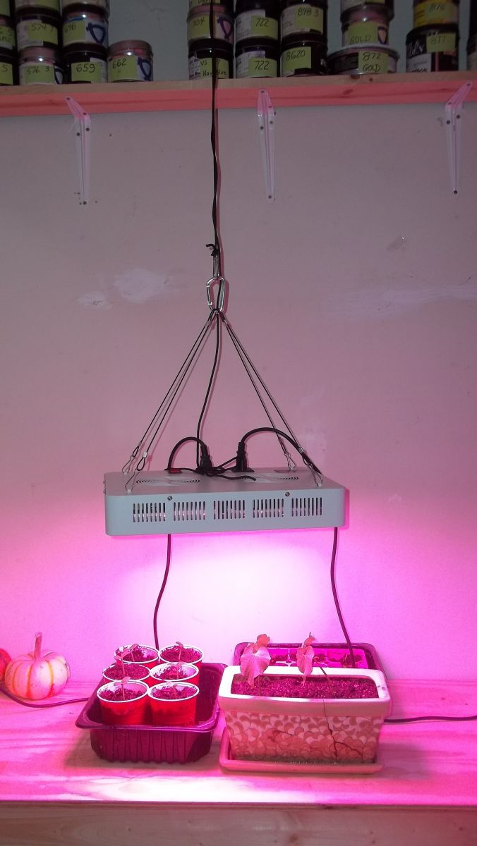HIGHGROW 2000 watt LED grow light review