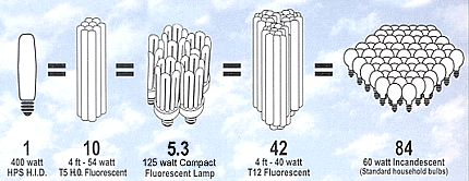 Grow Light Compare
